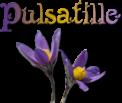 pulsatille.com