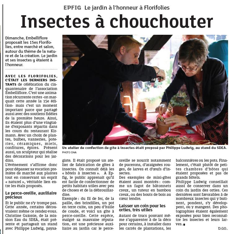 articleDNA-gite-inscetes